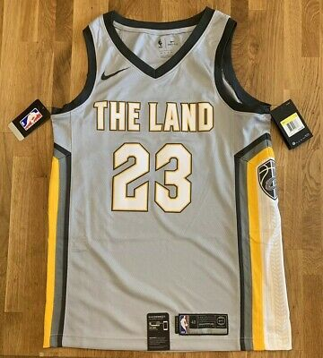 ade4bfe042b Nike Lebron James Jersey Cleveland Cavaliers The Land Size Adult Small 40  Cavs