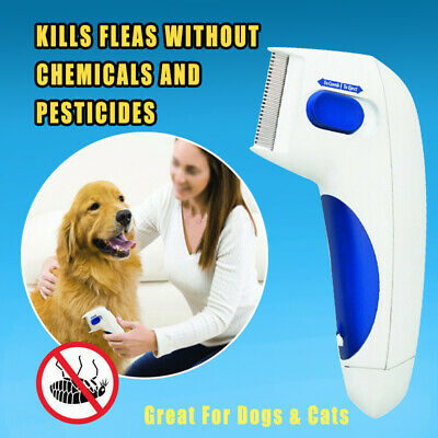 Flea Doctor Electric Comb Dog Cat Pets Head Lice Remover Brush Anti Flea Groom