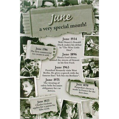 Chronicle Card - June Month