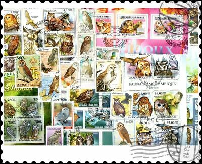 Owls : 50 Different Stamps Collection