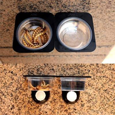 Reptiles Food Bowl Insects Breed Tank Dish Dispenser Wall Sucker Terrarium