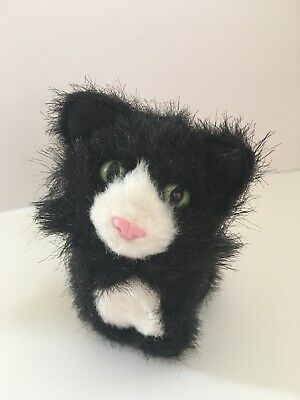 American Girl Doll BLACK LICORICE CAT PET with MAGNET Black Kitty