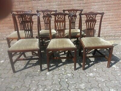 6 Antique Victorian mahogany dining chairs in good condition
