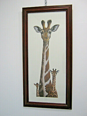 Giraffe Picture by Warwick Higgs, Highs and Lows Print, cute baby animals