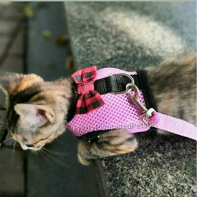 Cat Harness Coat and Leash Lead Set 4 Colours Small Large Cats Tiny New Kittens