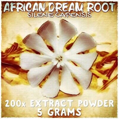 African Dream Root | (Silene Undulata) Capensis 200x Extract Powder [5 Grams]