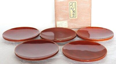 Japanese Vintage Lacquer Ware 5 Plate Wood Hida Shunkei Nuri Round with Box
