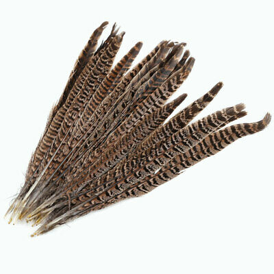 20Pcs Natural Pheasant Tail Feathers 12-14 Inch Long Craft Party DIY LA1