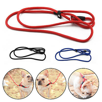 Nylon Rope Pet P-Leash Dog Training Slip Leash Lead & Collar Obedience 3  Colors