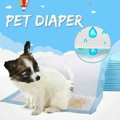 100 Disposable Dog Puppy Toilet Training Pad Large Absorbent Pee Wee Mat Diaper