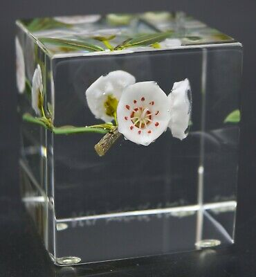 GORGEOUS Paul STANKARD Block MOUNTAIN LAURELS on BRANCH Art Glass PAPERWEIGHT