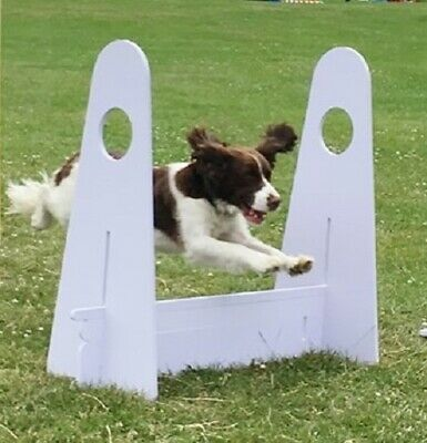 FLYBALL DOG JUMP 8 Section Hurdle - Agility Obedience BFA & UKFL Compliant
