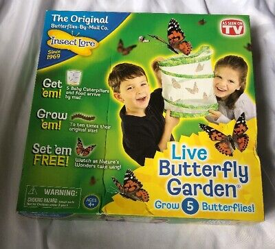 Insect Lore Live Butterfly Garden metamorphosis Entomology kit w bonus book