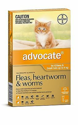 ADVOCATE for Cats Fleas, Worming & Ear Mites 6-Pack 0 - 4kg (Orange)