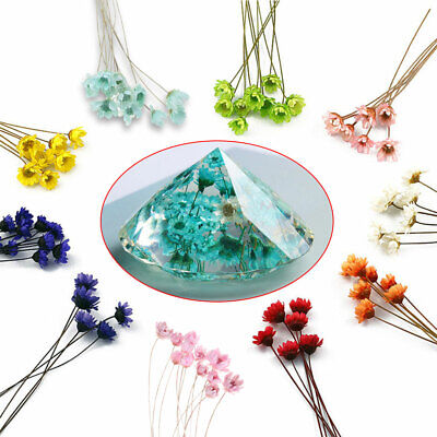 12pcs/pack Crystal Epoxy Mould UV Glue Mini Daisy Dried Material Flowers Filler