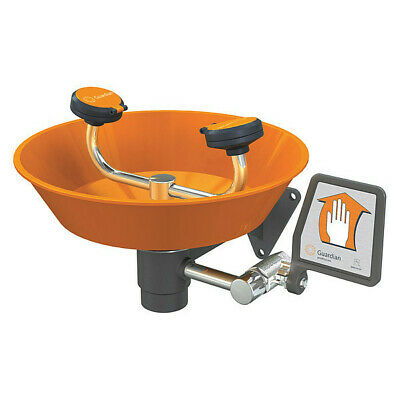 GUARDIAN EQUIPMENT G1750P Wall-Mounted Eyewash Station with ABS Plastic Bowl in