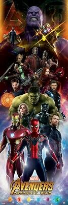 Avengers - Infinity War, Characters Poster Affiche (158x53cm) #111087