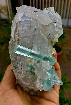 718 Gram Top Class Damage Free Terminated Blue Aquamarine W/ Quartz Specimen