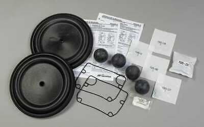 ARO 637375-TT Repair Kit,HDPE,For 6CCN4, 6CCN9