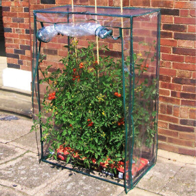 Tomato Growbag Growhouse Mini Outdoor Garden Greenhouse With PVC Cover 152cm