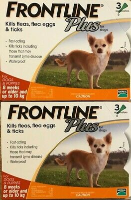Frontline Plus 6 Pack 6 Month For Dogs 0-22lbs 0-10KG Orange New In Box