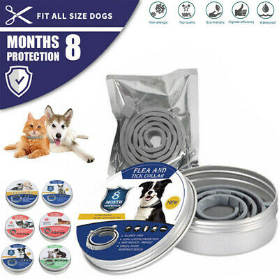 Flea and Tick Collar 8 Months Control Protection Adjustable For Dogs Cat UK
