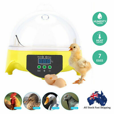 Digital 7 Eggs Incubator Automatic Turner Poultry Chicken Duck Egg Viewing Hole