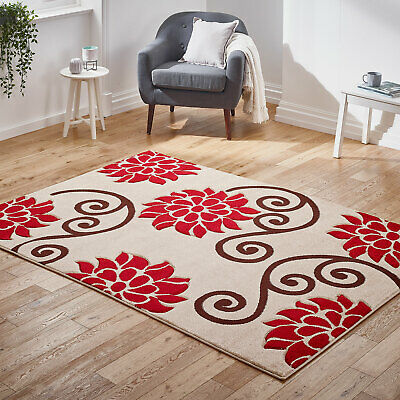 Modern Small Extra Large Carved Floral Beige Red Sale Budget Offer Rugs Ebay