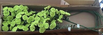 Pod Berry Mix Foliage Stem~Wire Foam Artificial~Light Green (7) Stems