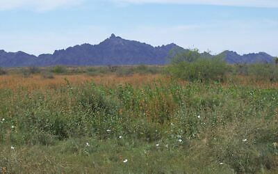 40 Acres Southern Arizona , Just North Of Interstate 8