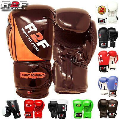 Pro Leather DX Shine Boxing Gloves,MMA,Sparring Punch Bag,Muay Thai