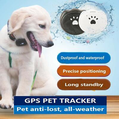 Pet GPS Tracker Dog Anti-Lost APP Online Real Time Tracking Locator Necklace UK