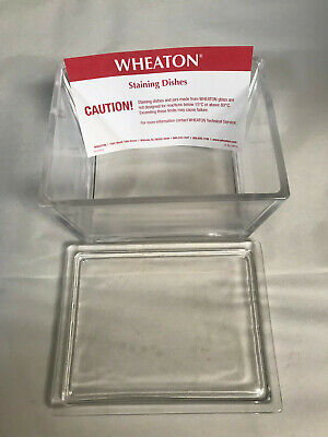NEW Wheaton 900301 - Glass Staining Dish with Lid NEW