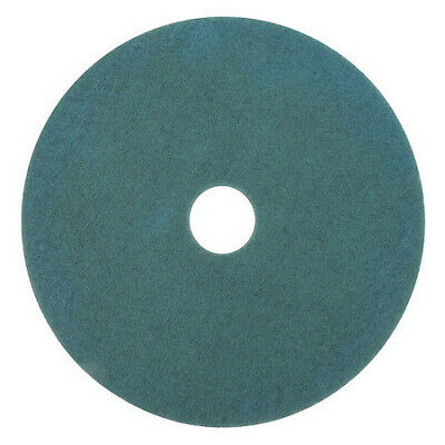 3M 3100 Burnishing Pad,27 In,Aqua,PK5