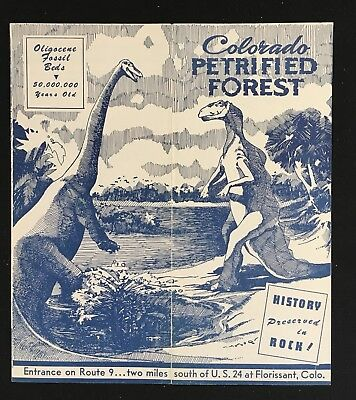 Colorado Petrified Forest Advertising Pamphlet Brochure Vintage Circa 1940'-50's