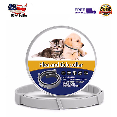 Flea and Tick Collar for Cats, Medium/Large Dogs, 8 Month Protection, USA Seller