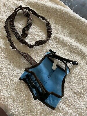 Soft Harness With Elastic Leash for Bunny Blue And Brown In Color