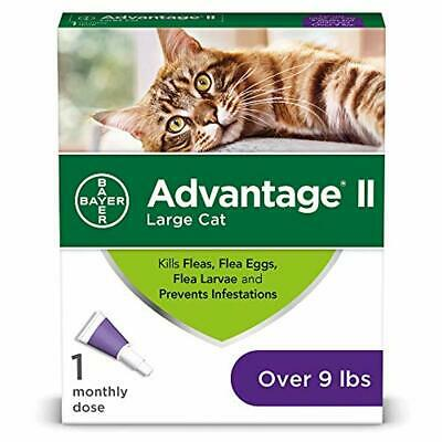Bayer Advantage II Cat Flea Tick Medicine Prevention for Large Cats, Over 9 lbs