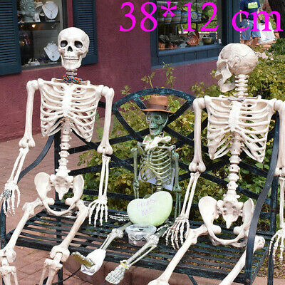 2019 Halloween Human Skeleton Poseable Decoration Party Decoration US