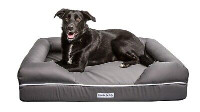 Friends for Life Large Premium Orthopedic Memory Foam Dog Bed and Lounge