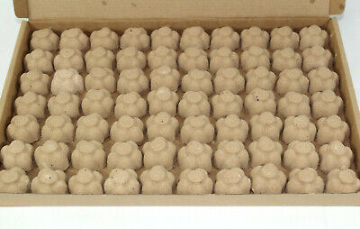 Bath Bombs Chocolate scented 70 x 10g Flowers less mess reduced plastic
