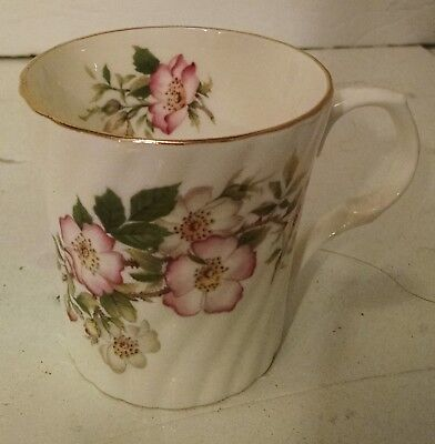 Antique Royal Victorian Tea Cup Bone China Gold Rim Stratfordshire England