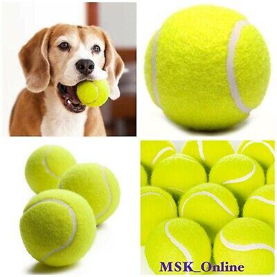 NEW Tennis Balls Dog Pet Toy Pets Bouncing Sports Games Ball Fun Outdoor Cricket