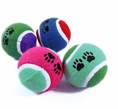 Tennis Balls Colour Ball Games Dog Pet Toy Pets Bouncing Sports Games Fun Play