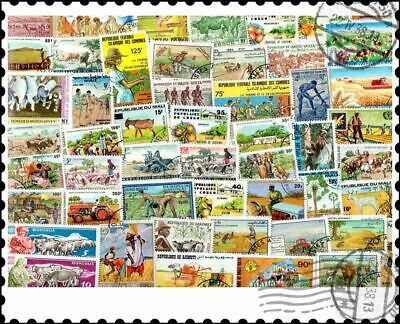 Agriculture : 50 Different Stamps Collection