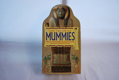 Lift The Lid On Mummies by Dineen, Jacqueline