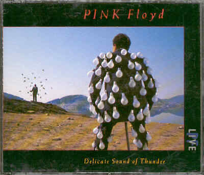 PINK FLOYD Live Delicate sound of thunder 2CD inkl. Wish you were here, The wall