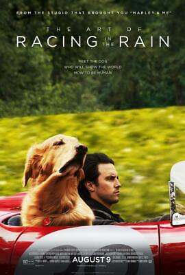 The Art of Racing in the Rain Movie Poster 8x10 11x17 16x20 22x28 24x36 27x40 A