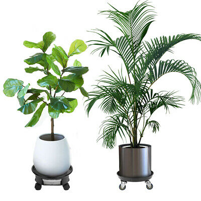Pair Rolling Plant Caddy Stands Planter Trolley Plant Display Indoor Outdoor US