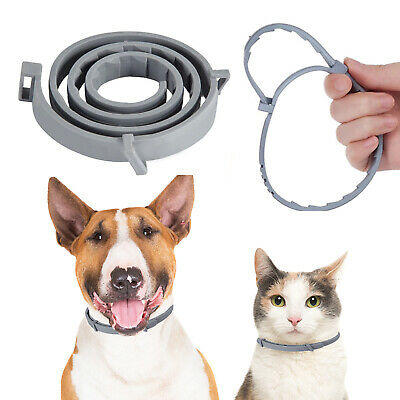 Adjustable Pet Anti Flea and Tick Neck Collar For Dogs Cats 8 Months Protection